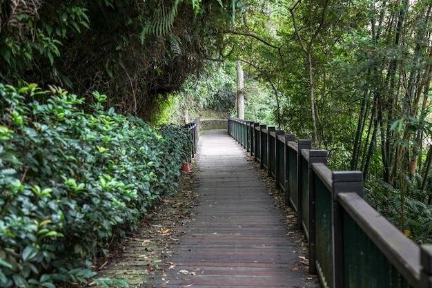 Die wegweise vom naturholz für weg im sonnenmondsee bei taiwan