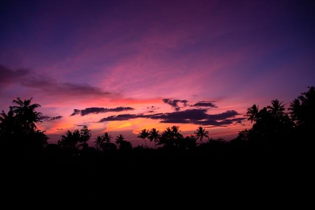 Die wolken und der himmel sind am morgen wunderschön gefärbt