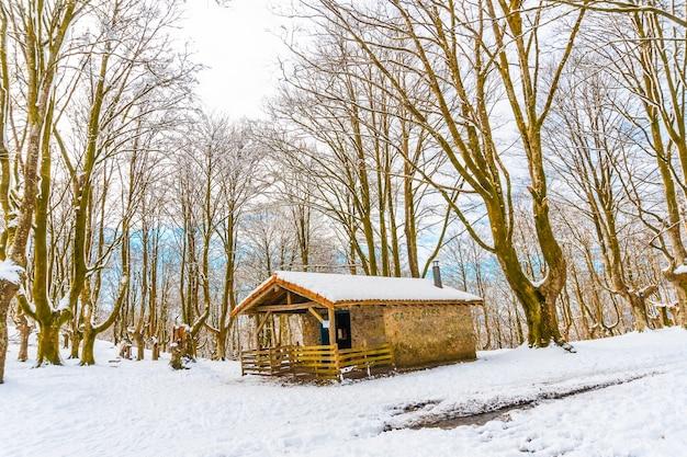 Die zuflucht neben bäumen im schneebedeckten naturpark oianleku in der stadt oiartzun, im winter neben penas de aya, gipuzkoa. baskenland