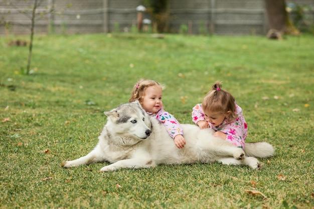 Die zwei kleinen babygirsl, die mit hund gegen grünes gras im park spielen