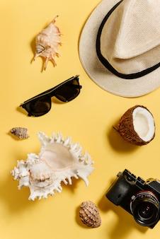 Dinge von touristen, die sich aus einem blickwinkel ausruhen. hut, sonnenbrille, kamera, muscheln, kokosnuss.