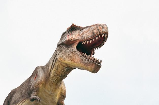 Dinosaurier auf dem klaren hintergrund, t rex, tyrannosaurus rex
