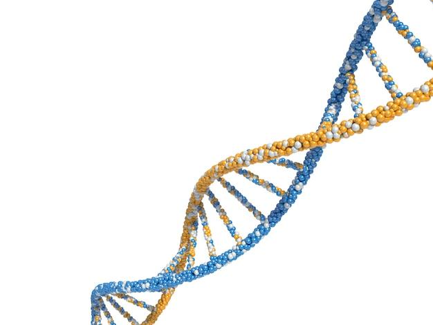 Dna-moleküle rendern