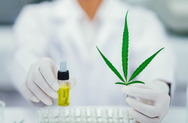 Doktor, der ein cannabisblatt und eine öltropfer hält