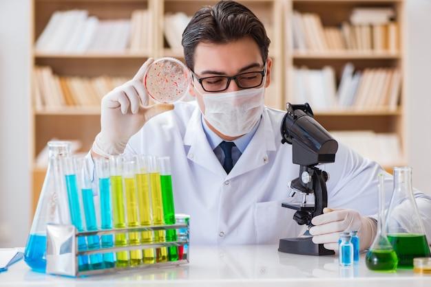 Doktor, der virusbakterien im labor studiert