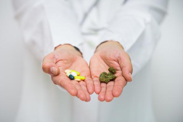Doktorhand, die knospe des medizinischen hanfs und der pillen hält.