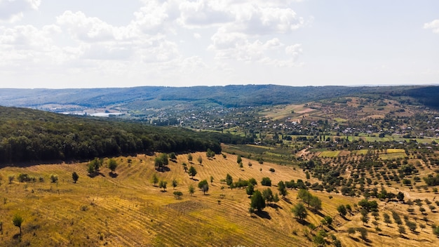 Dorf im flachland, seltene dreier und wald im vordergrund mit hügeln