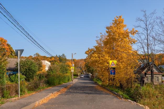 Dorf im herbst. russische dorfstraße. gepflasterte straße durch das datscha-dorf im herbst.