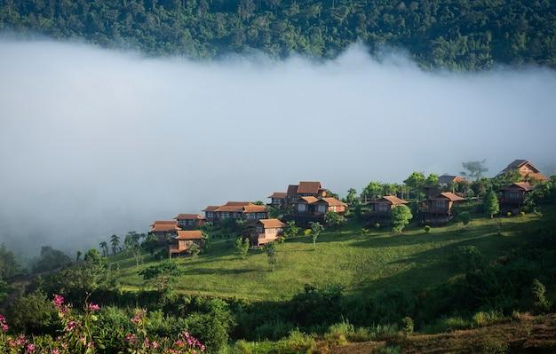 Dorf thailand mit nebeligem landschaftsgebirgsnebelhaftem wald mit baum