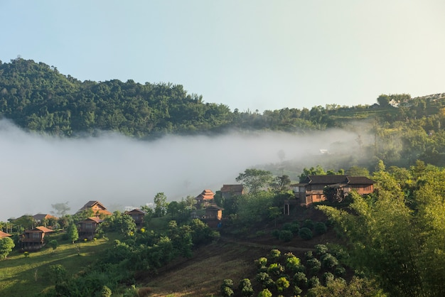Dorf thailand mit nebeliger landschaftsgebirgsnebelhaftem wald mit baum und haus in der moring winternatur - ansicht des nebeligen hauses auf hügellandschaft