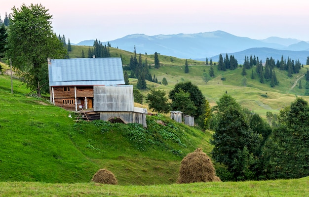 Dorfhäuser auf hügeln mit grünen wiesen am sommertag. hirtenhaus in bergen in karpaten