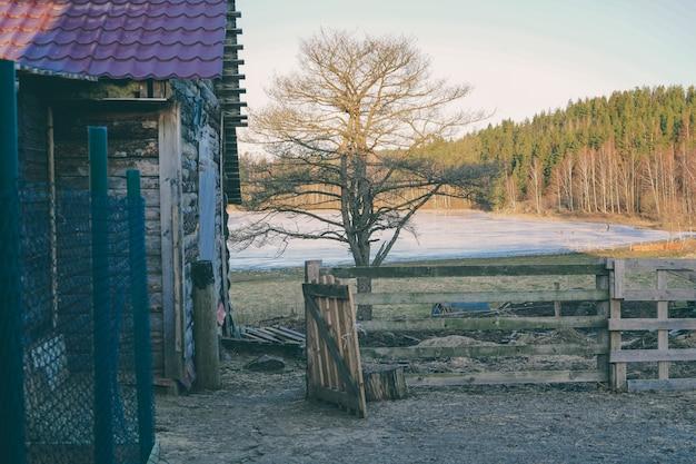 Dorfhaus am see. waldsee mit einem holzhaus. platz für ruhe am teich