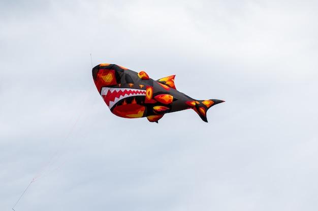 Drachen, die in den himmel unter den wolken fliegen.