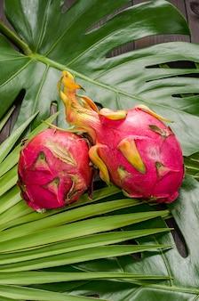 Drachenfrucht auf den blättern der palme und des monsters.