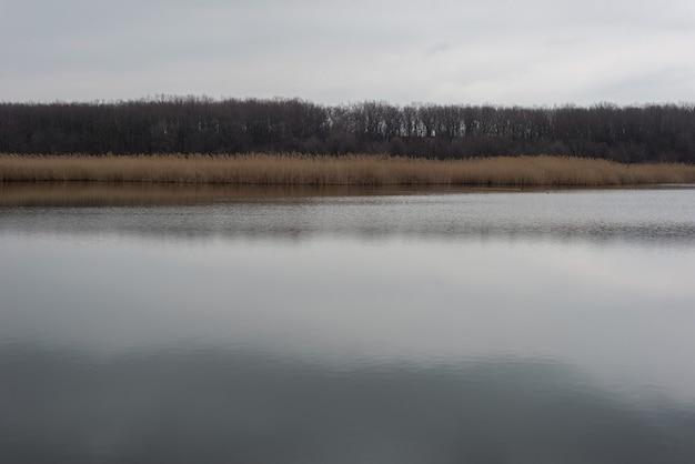 Dramatische landschaft des schilfflusses mit reflexion des bewölkten himmels