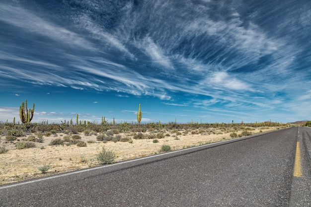 Dramatische landschaft mit einer straße durch eine mexikanische wüste bei san ignacio, baja california, mexiko