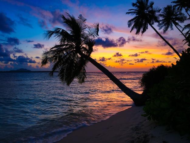 Dramatischer himmel des sonnenaufgangs auf meer, tropischer wüstenstrand