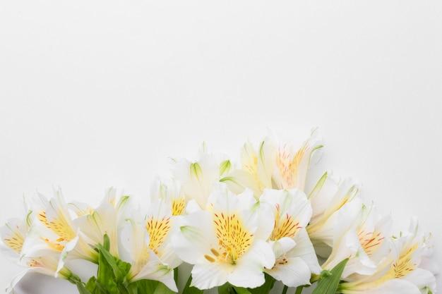 Draufsicht alstroemeria bouquet mit kopierraum