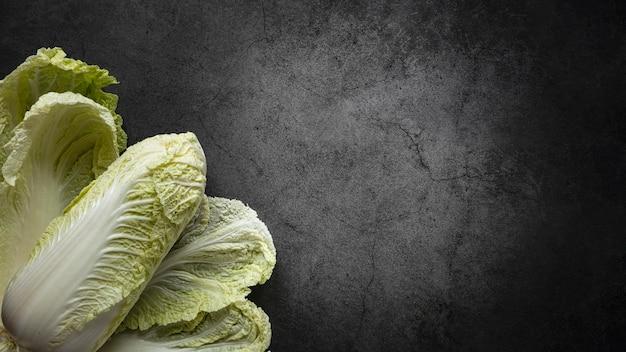 Draufsicht anordnung des salatkopierraums