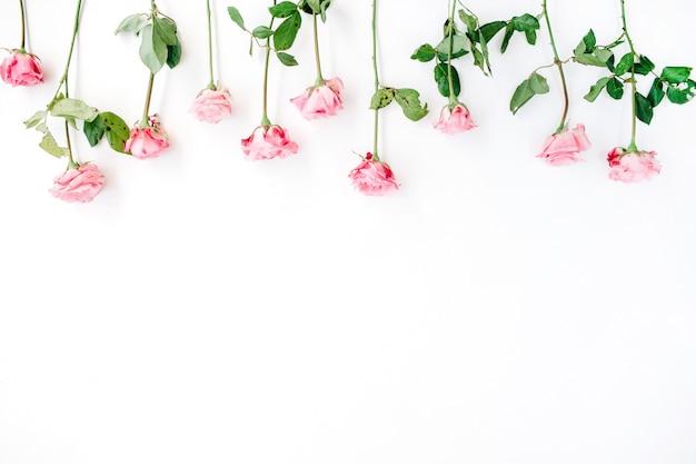 Draufsicht auf bunte wildblumen isoliert