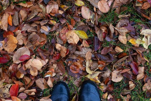 Draufsicht auf die füße in gummischuhen auf dem hintergrund von verwelkten, gefallenen braunen herbstblättern mit kopierraum