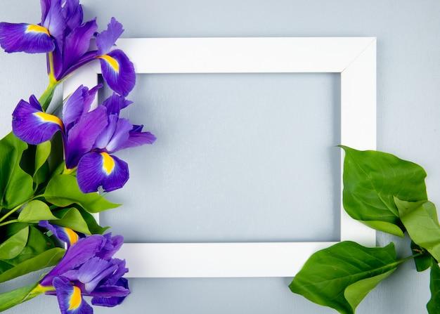 Draufsicht auf einen leeren bilderrahmen mit dunkelvioletten irisblumen lokalisiert auf weißem hintergrund mit kopienraum