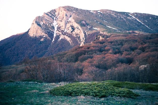 Draufsicht auf einen malerischen hügel bedeckt mit gras und ohne und laubwechselnden sträuchern sonniger herbstmorgen. konzept des trekkings durch naturschutzgebiete und berge