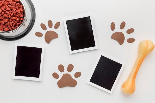 Draufsicht auf fotos mit pfotenabdrücken und knochen für tiertag