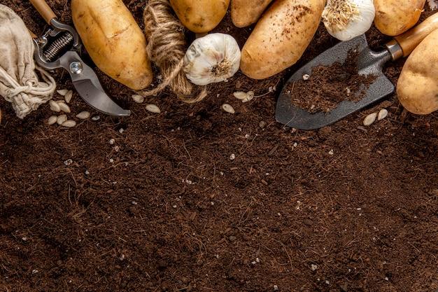 Draufsicht auf kartoffeln mit kopierraum