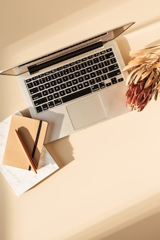 Draufsicht auf laptop, protea blumen und notizbuch