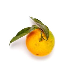 Draufsicht auf mandarine oder mandarine mit zwei blättern auf weiß