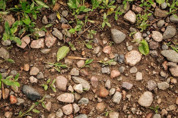 Draufsicht auf natürliche erde mit steinen und gras