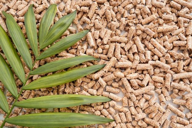 Draufsicht auf pflanzenblätter von pellets mit kopierraum