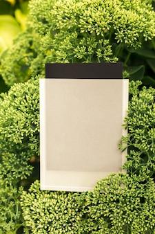 Draufsicht auf quadratischen rahmen ein kreatives layout aus einem stück sedium mit schwarz-weißem etui...