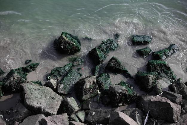 Draufsicht auf verschiedene steine am seeufer.