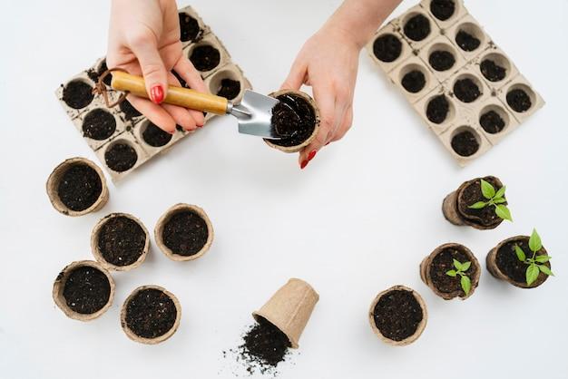 Draufsicht boden für pflanzen