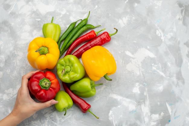 Draufsicht bunte paprika mit paprika auf grau