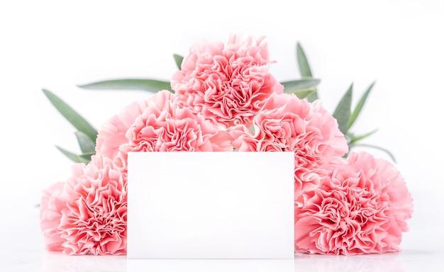 Draufsicht der eleganz, die zarte nelken der süßen rosa farbe blüht, lokalisiert auf hellem weißem hintergrund mit karte, nahaufnahme, kopienraum