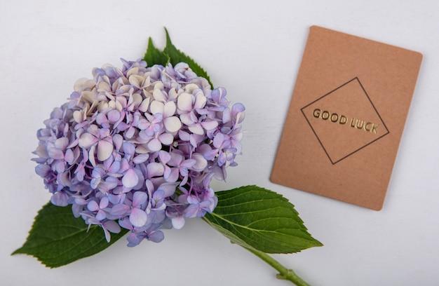 Draufsicht der erstaunlichen und frischen gardenzia-blume mit blättern und mit glückskarte auf einem weißen hintergrund