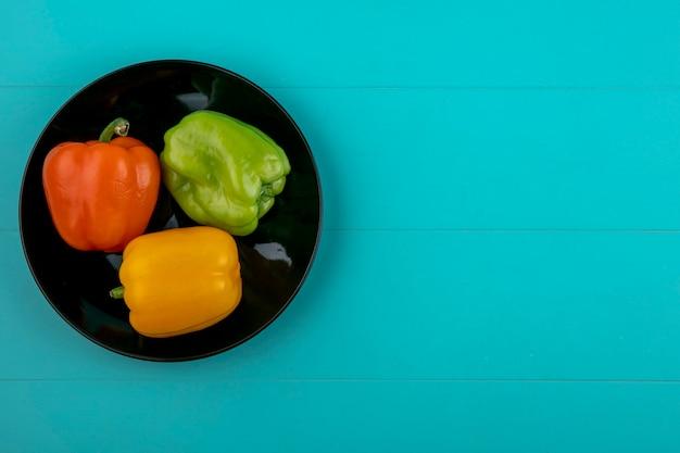 Draufsicht der farbigen paprika auf einem schwarzen teller auf einer türkisfarbenen oberfläche