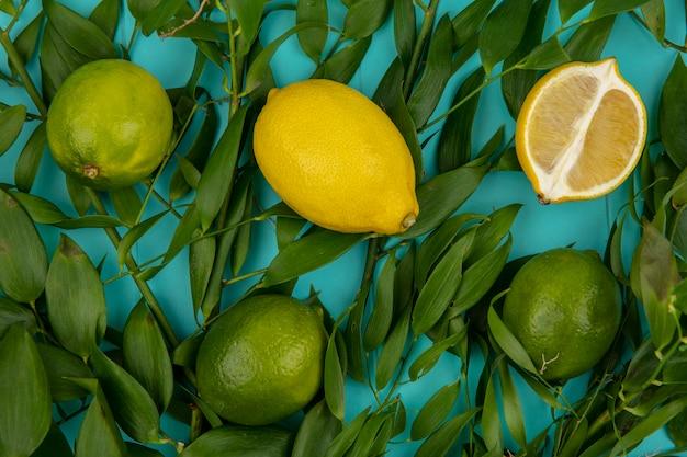 Draufsicht der frischen gelben und grünen zitronen mit blättern auf blau