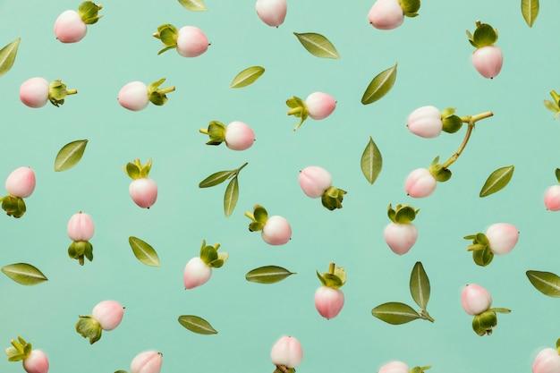 Draufsicht der frühlingsblütenknospen