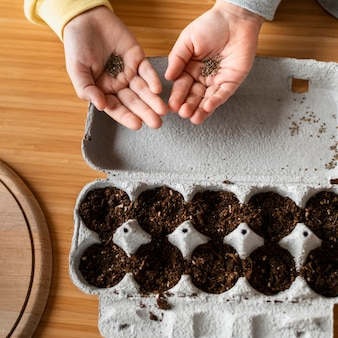 Draufsicht der kleinen kinder, die schmutz für das pflanzen von samen halten