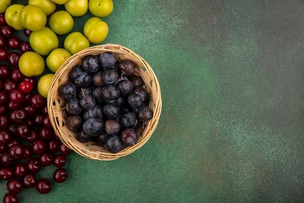 Draufsicht der kleinen sauren blau-schwarzen fruchtschleife auf einem eimer mit grüner kirschpflaume mit roten kirschen auf einem grünen hintergrund mit kopienraum