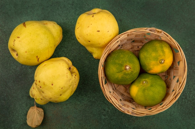 Draufsicht der köstlichen mandarinen auf einem eimer mit quitten