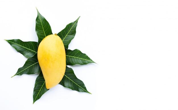 Draufsicht der mango, der tropischen frucht saftig und süß.