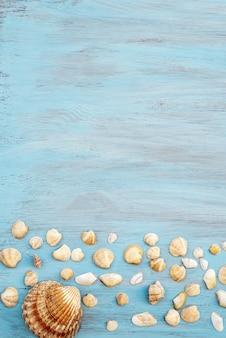 Draufsicht der muschel auf hellblauem holz für sommerferienzeithintergrund