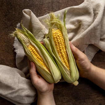 Draufsicht der person, die mais hält