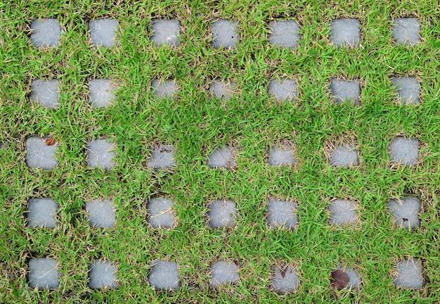 Draufsicht der rasensteinpflastersteine bedeckt mit vibrierendem grünem gras