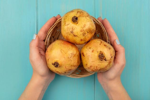 Draufsicht der weiblichen hände, die einen eimer der süßen granatäpfel auf einer blauen oberfläche halten